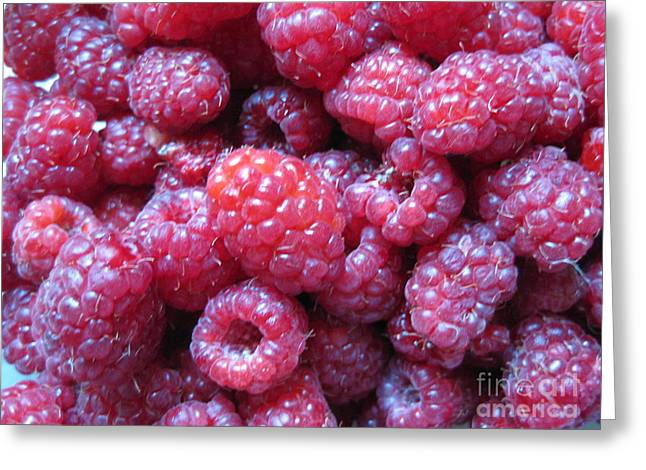 Garden Rasberries Greeting Card by Judy Via-Wolff