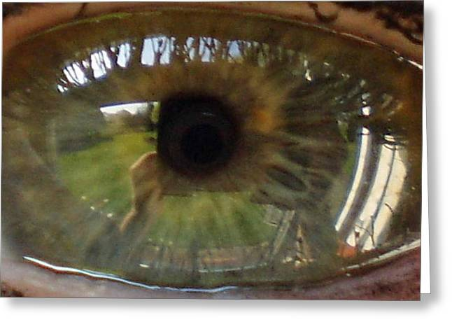 Garden Reflected In Eye Greeting Card by Shirley anne Dunne