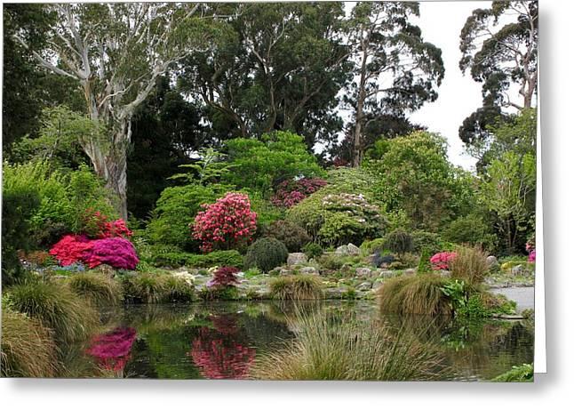 Garden Reflection Greeting Card