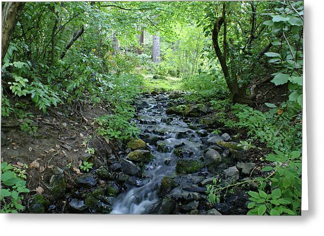 Greeting Card featuring the photograph Garden Springs Creek In Spokane by Ben Upham III