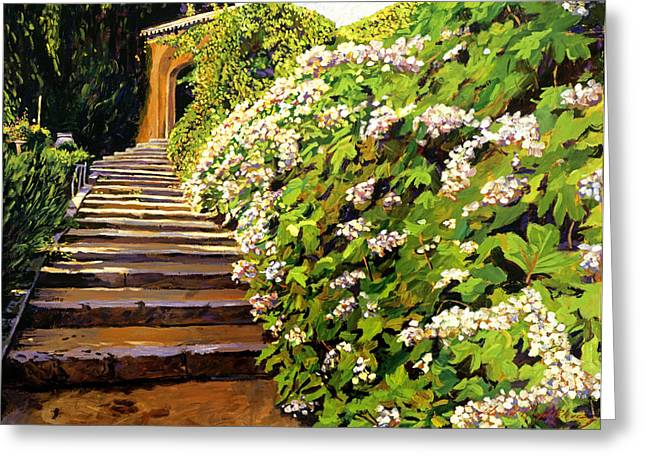 Garden Stairway Tuscany Greeting Card by David Lloyd Glover