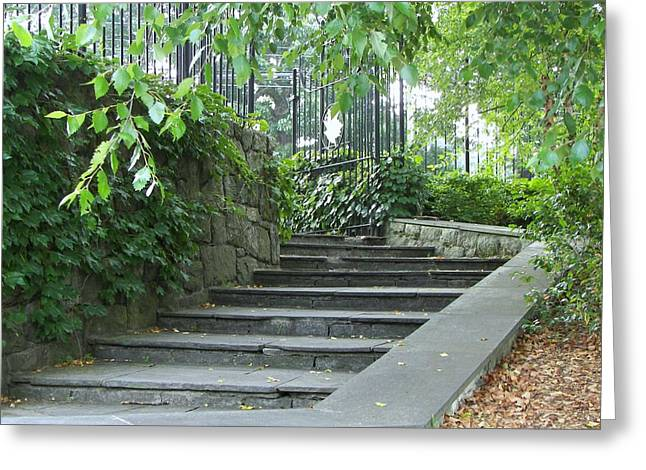 Stone Steps Mixed Media Greeting Cards - Garden Steps Greeting Card by D Steven Brito