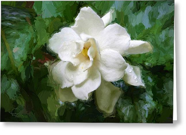 Gardenia Blossom Greeting Card by Ludwig Keck
