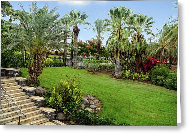 Gardens At Mount Of Beatitudes Israel Greeting Card by Brian Tada