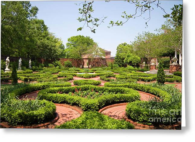 Gardens At Tryon Palace Greeting Card by Jill Lang