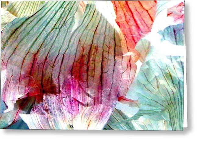 Garlic  Abstract   Series Greeting Card