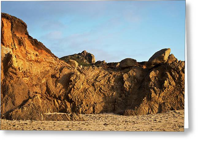Garrapata Beach II Greeting Card by David Gordon