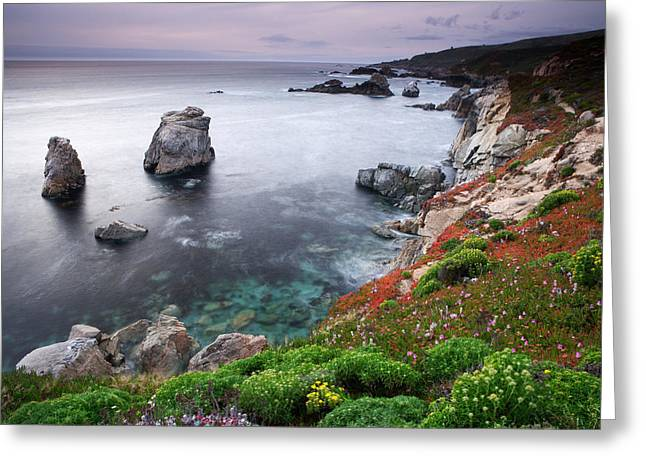 Garrapata Shore Greeting Card by Eric Foltz