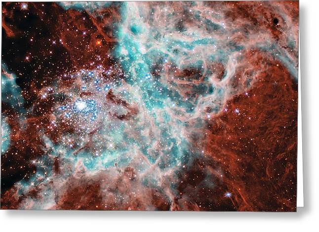 Gas And Dust Where Thousands Of Stars Are Being Born In The Doradus Nebula Greeting Card by American School