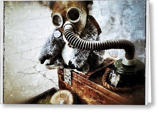 Gas Mask Koala Greeting Card by Natasha Marco