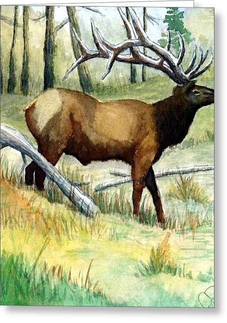 Gash Flats Bull Greeting Card by Jimmy Smith
