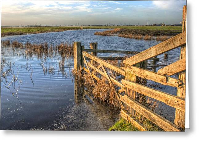Gate On The Marsh Greeting Card by Dave Godden