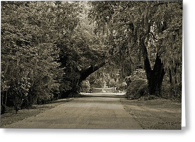 Gate To Magnolia Plantation Greeting Card