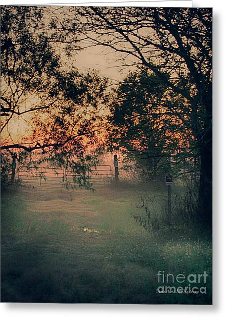 Greeting Card featuring the photograph Gated Sunset by Charles McKelroy