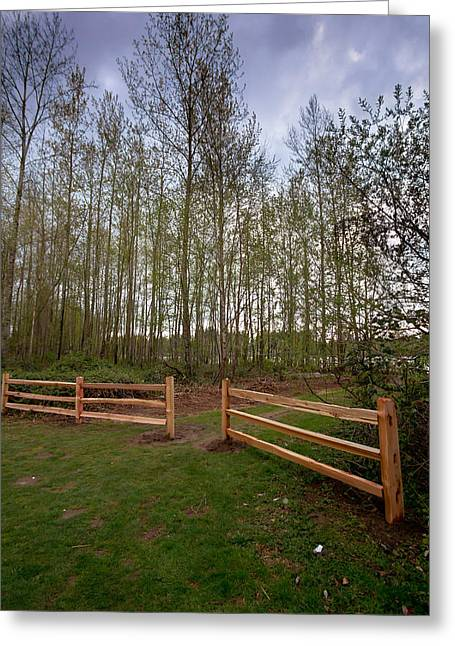 Gates To The Birch Wood Greeting Card by Eti Reid
