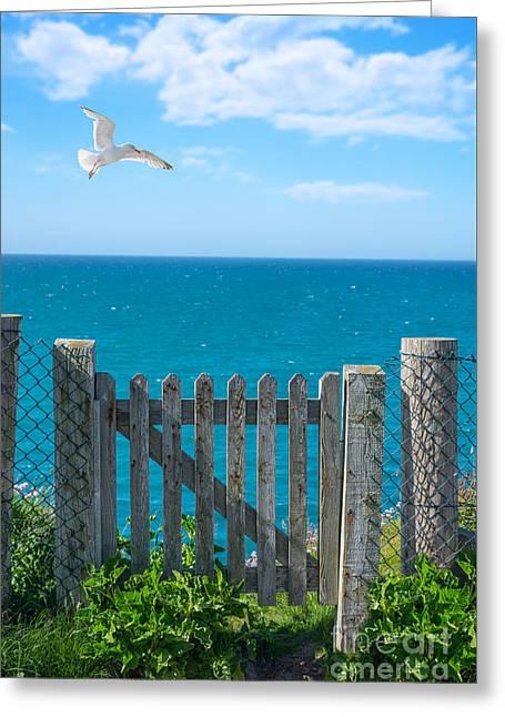Gateway To The Sea Greeting Card by Amanda Elwell