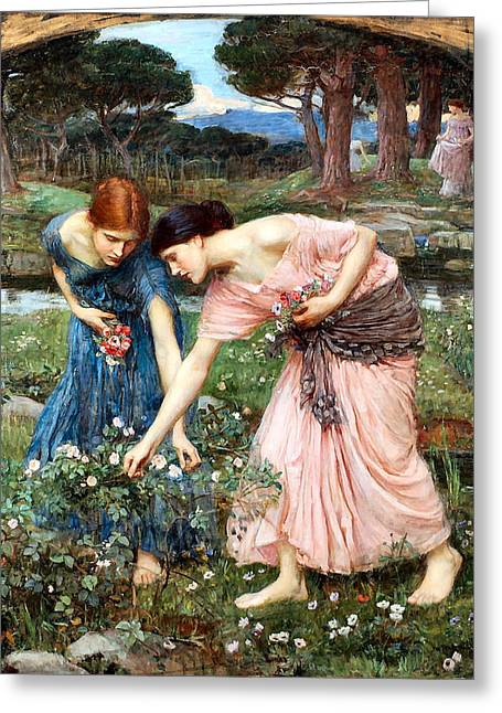 Gather Ye Rosebuds While Ye May Greeting Card
