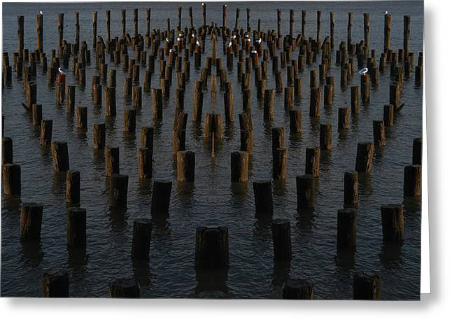 Gathering On The Hudson Greeting Card