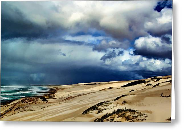 Gathering Storm Over The Beach Dunes Greeting Card by Elaine Plesser