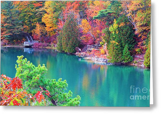 Gatineau Park Tour Greeting Card by Charline Xia