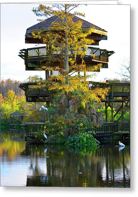 Gator Tower Greeting Card