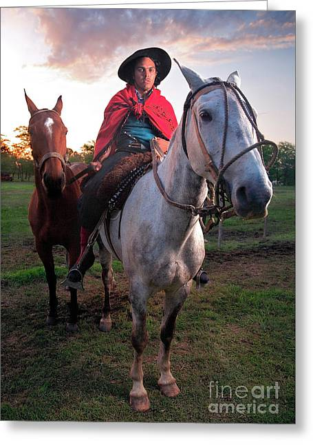 Gaucho Argentino Greeting Card
