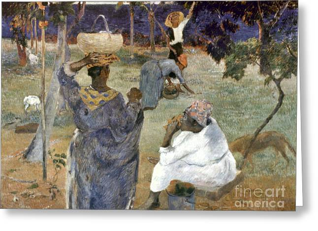 Gauguin: Martinique, 1887 Greeting Card by Granger