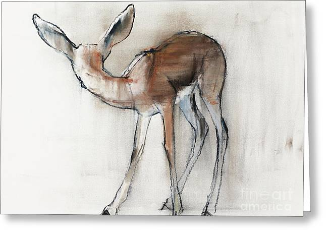 Gazelle Fawn  Arabian Gazelle Greeting Card by Mark Adlington