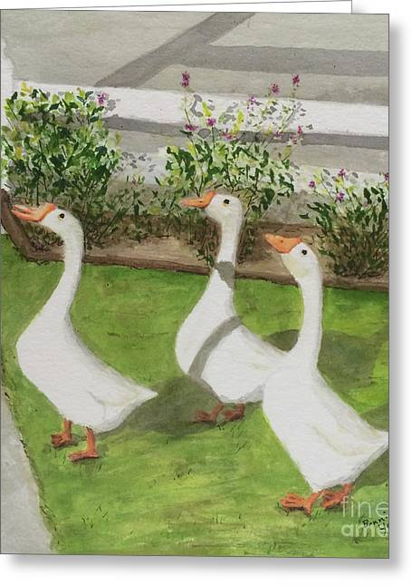 Geese Police Greeting Card by Bonnie Young