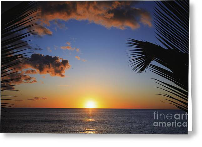 Generic Sunset Greeting Card by Brandon Tabiolo - Printscapes