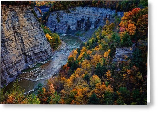 Genesee River Gorge II Greeting Card by Rick Berk