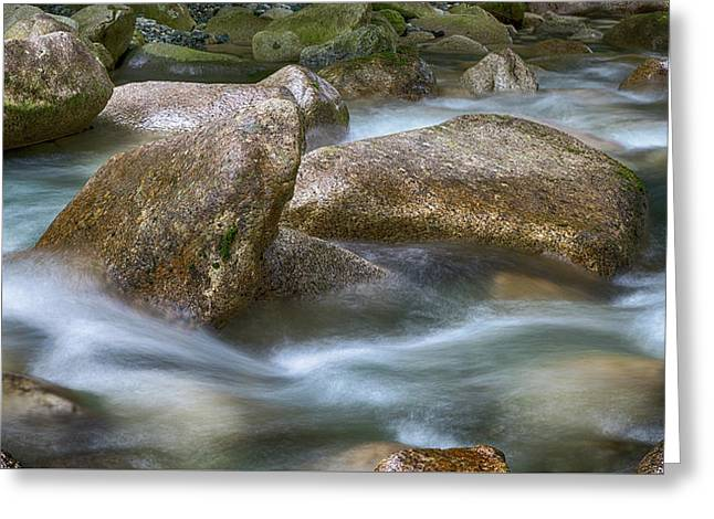Gentile Waters Greeting Card by Stephen Stookey