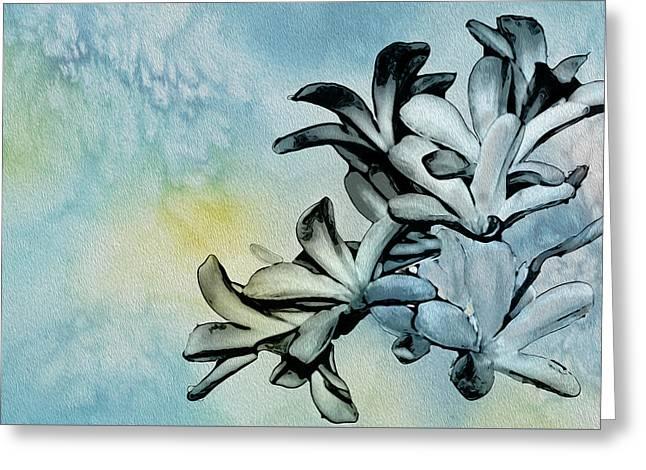 Gentle Blooms Greeting Card