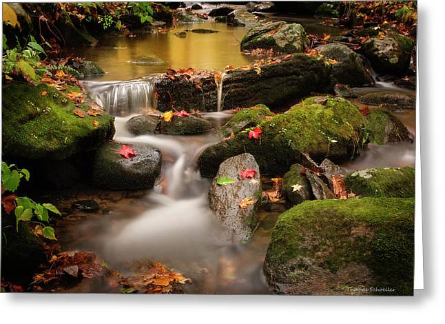 Gentle Cascades Of Autumn  Greeting Card