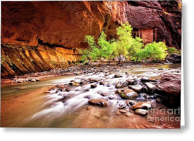 Greeting Card featuring the photograph Gentle Flow by Scott Kemper