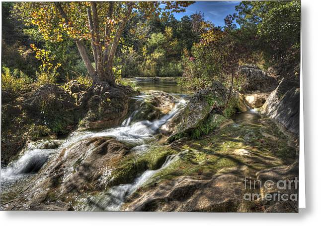 Gentle Mountain Stream Greeting Card by Tamyra Ayles
