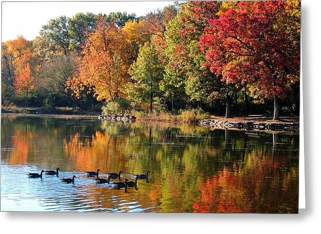 Gentle Reflections Greeting Card by Teresa Schomig