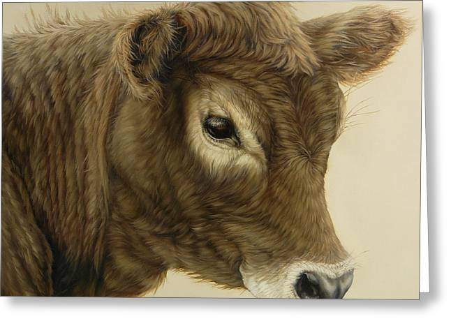 Gentle Swiss Calf Greeting Card by Margaret Stockdale