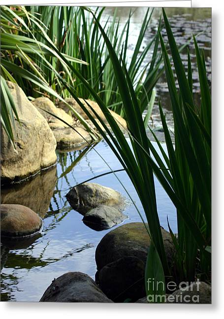 Gentle Water Greeting Card
