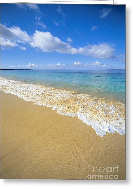 Gentle Waves Rolling Greeting Card by Carl Shaneff - Printscapes