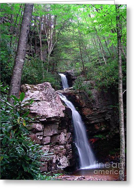 Gentry Creek - Double Falls Greeting Card