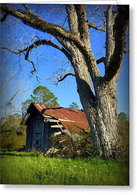 Georgia Barn Greeting Card by Carla Parris