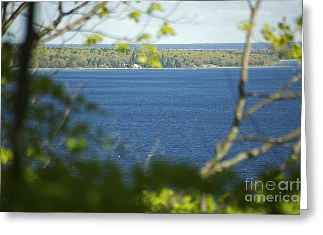Georgian Bay From Bluff Trail Greeting Card by Elaine Mikkelstrup