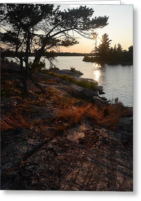 Georgian Bay Rock-wild Grass At Sunset Greeting Card