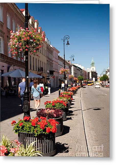 Geranium Flowers Growing Along Street Greeting Card