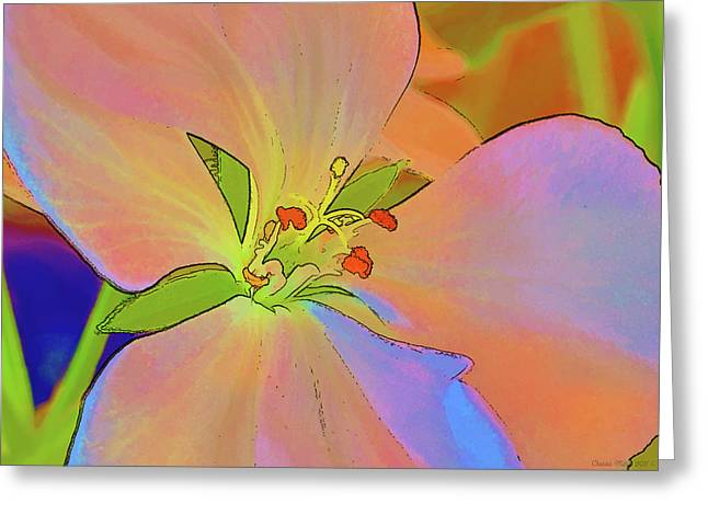 Geranium In Color Greeting Card
