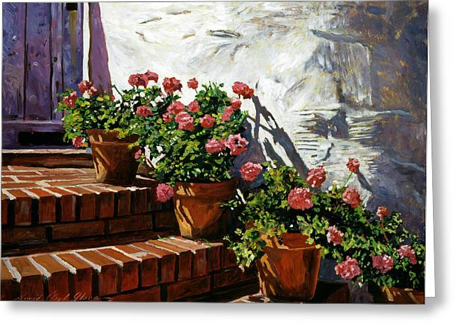 Geranium Steps Greeting Card by David Lloyd Glover