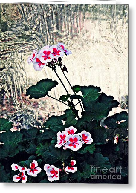 Geraniums And Old Glass  Greeting Card by Sarah Loft