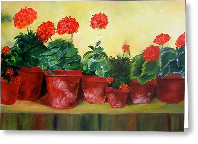 Geraniums In A Row-- Sold Greeting Card