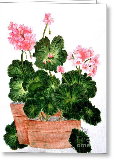 Greeting Card featuring the painting Geraniums In Clay Pots by Terri Mills